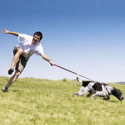 dog_pulling_on_leash_article_thumbnail.jpg